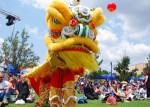 Chinese Spring Festival in Johannesburg